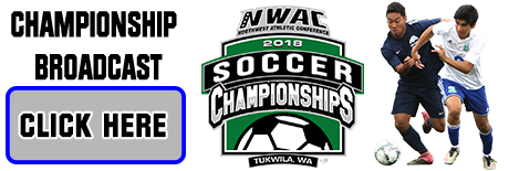 Soccer Championship broadcasts: Click to View