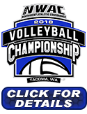 Volleyball Championhip Link image