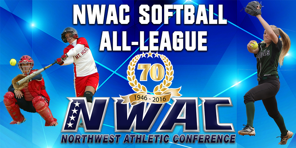 Image of Softball All-League Banner