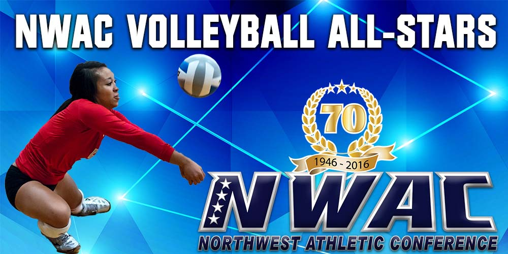 Volleyball All-Star Graphic